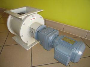 DSCN0028- małe